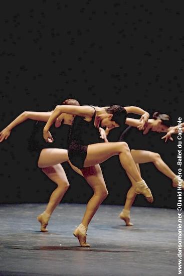 falling angels dance essay